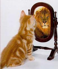 kitten-looking-in-mirror-sees-lion